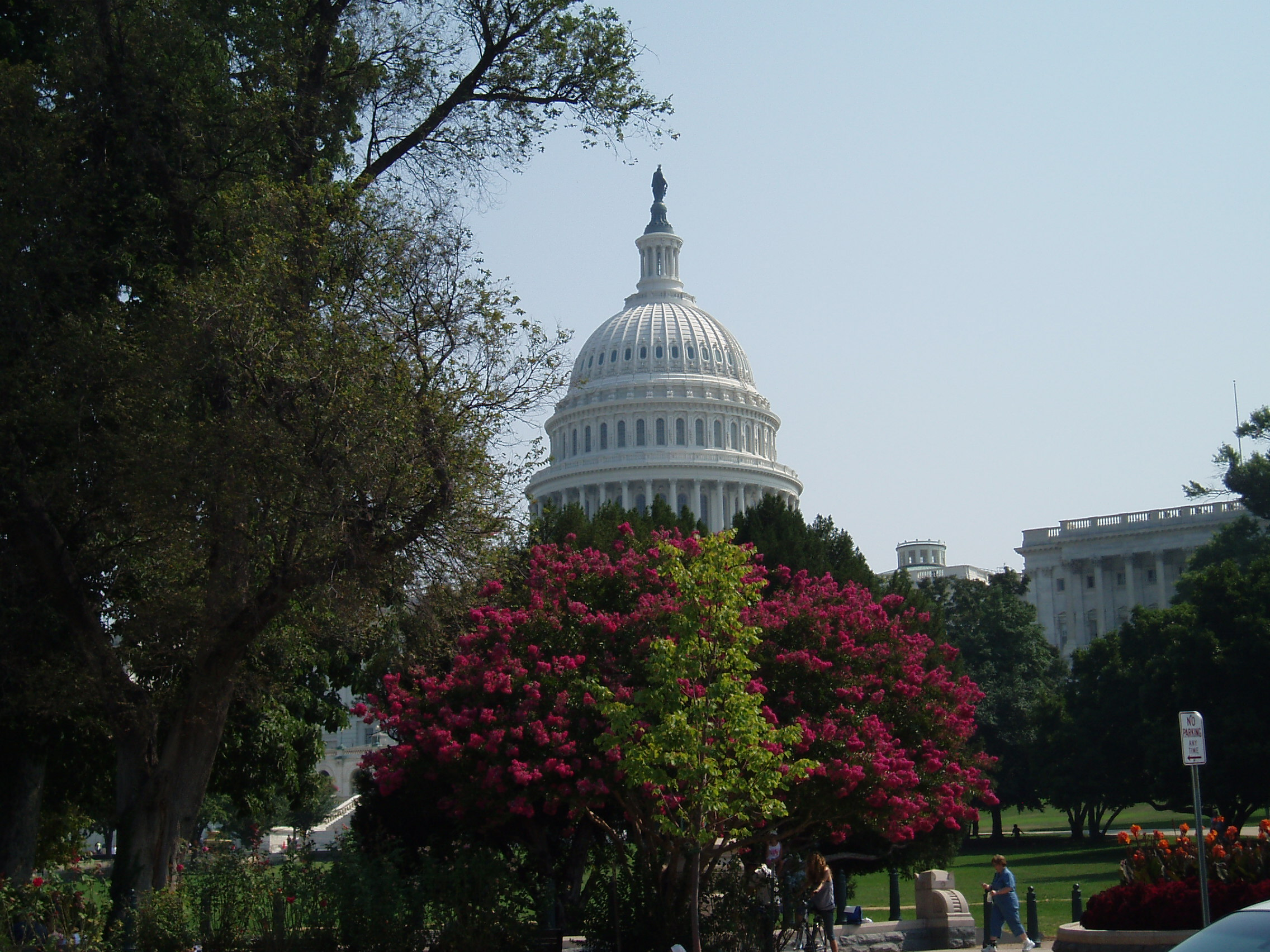 Writing from the nation's capital