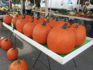 Row of pumpkins at Farmers' Market